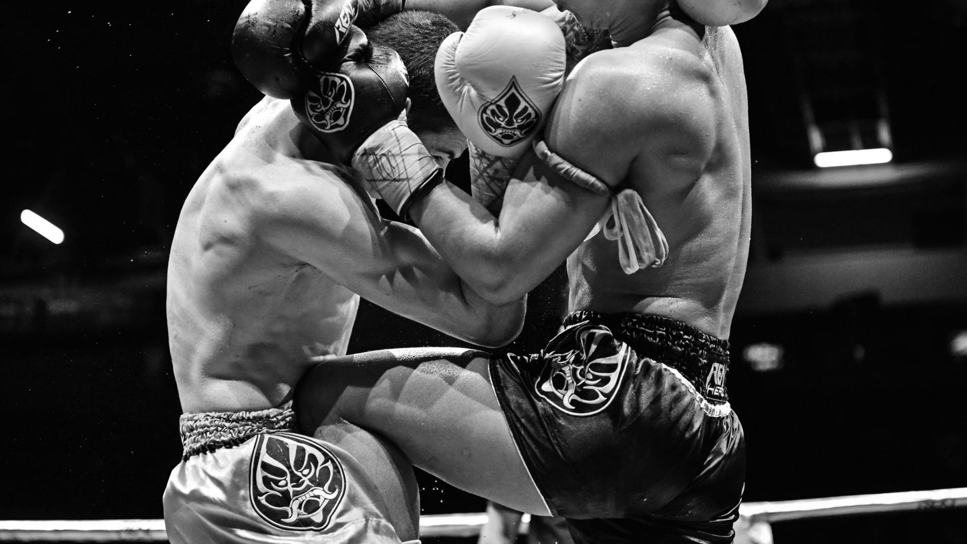 смотреть картинки тайского бокса оживленных магистралей, живописная